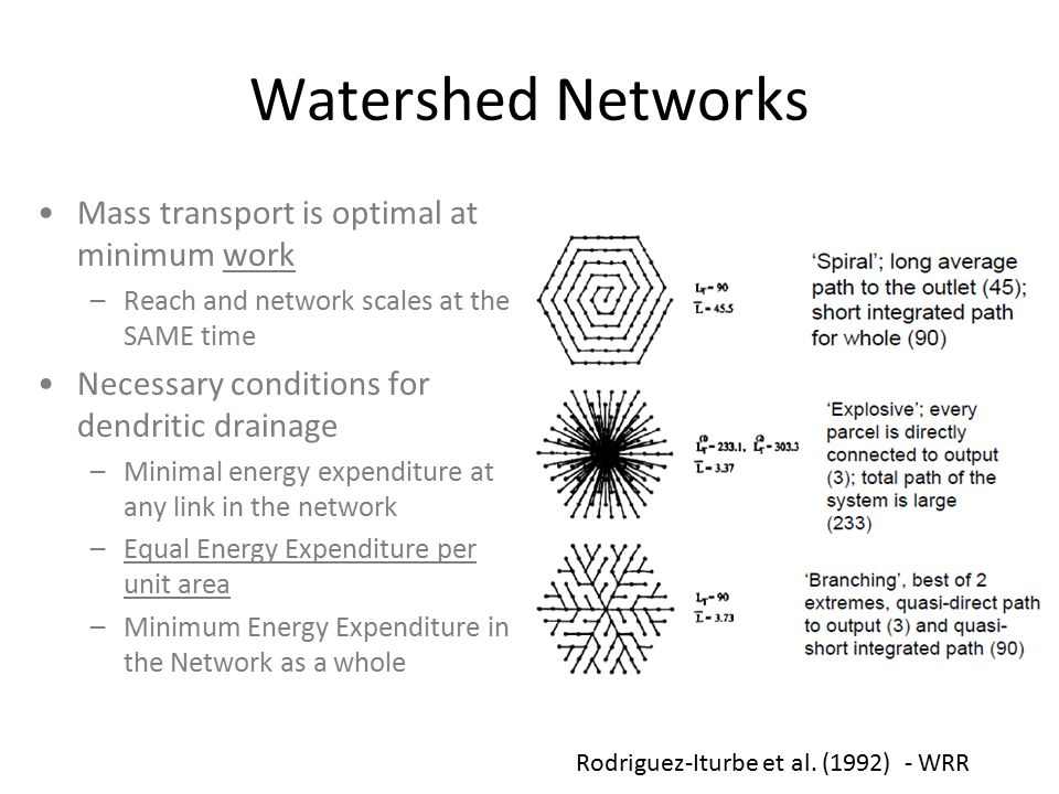 Watershed Networks Mass transport is optimal at minimum work