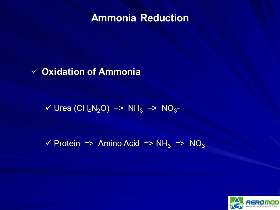 Ammonia Reduction Oxidation of Ammonia