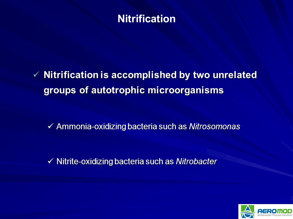 Nitrification * 07/16/96. Nitrification is accomplished by two unrelated groups of autotrophic microorganisms.