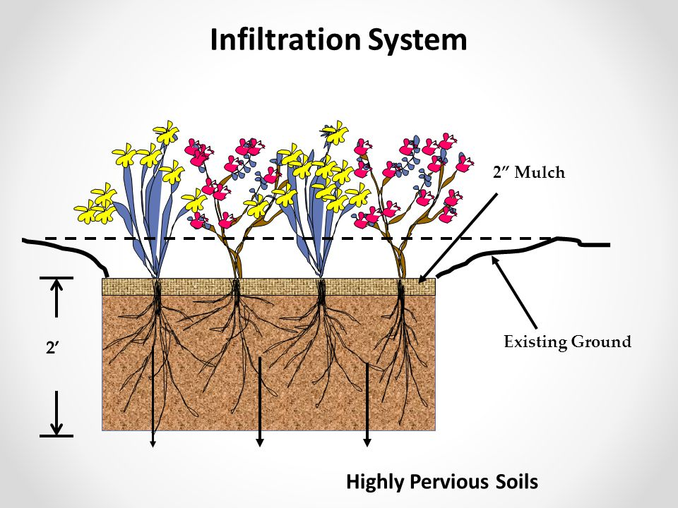 Infiltration System 2 Mulch Existing Ground 2' Highly Pervious Soils