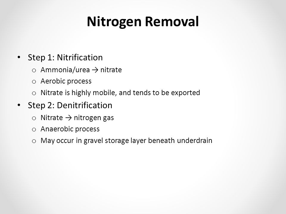 Nitrogen Removal Step 1: Nitrification Step 2: Denitrification