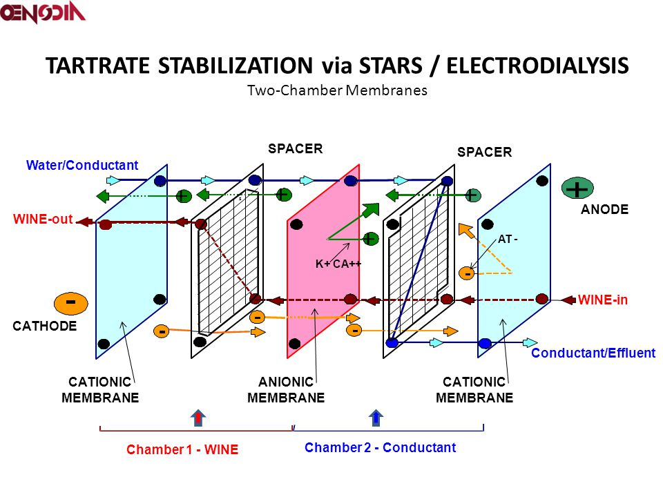 TARTRATE STABILIZATION via STARS / ELECTRODIALYSIS Two-Chamber Membranes