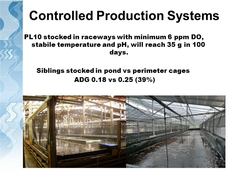 Controlled Production Systems