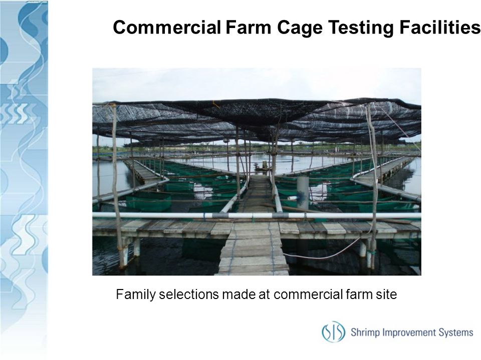 Commercial Farm Cage Testing Facilities