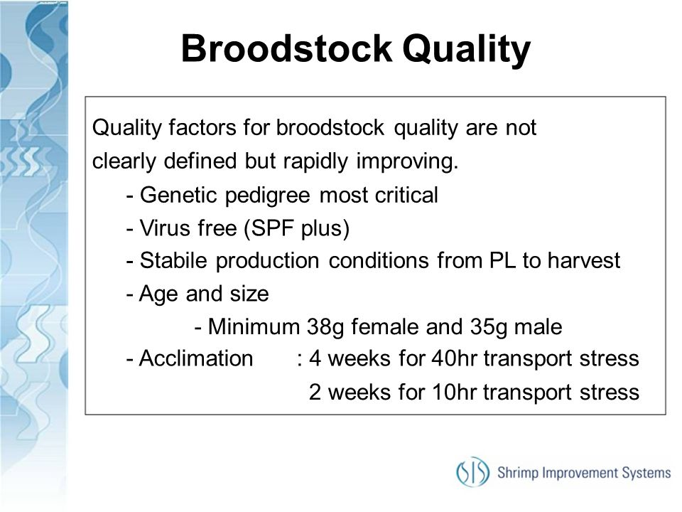Broodstock Quality Quality factors for broodstock quality are not clearly defined but rapidly improving.