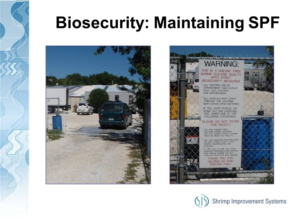 Biosecurity: Maintaining SPF