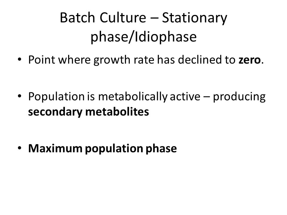 Batch Culture – Stationary phase/Idiophase