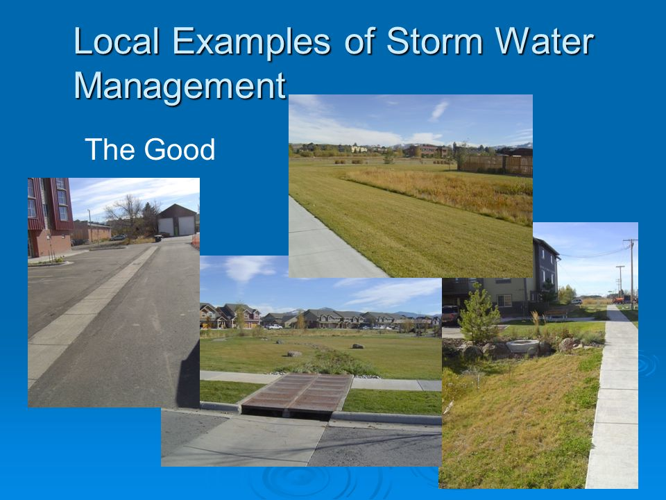Local Examples of Storm Water Management