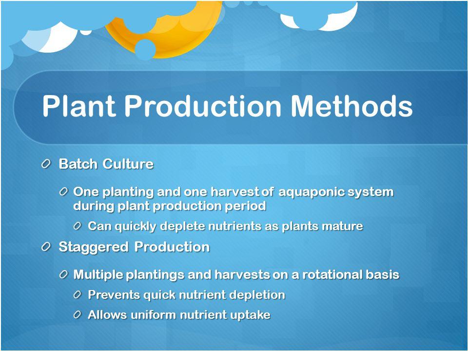 Plant Production Methods