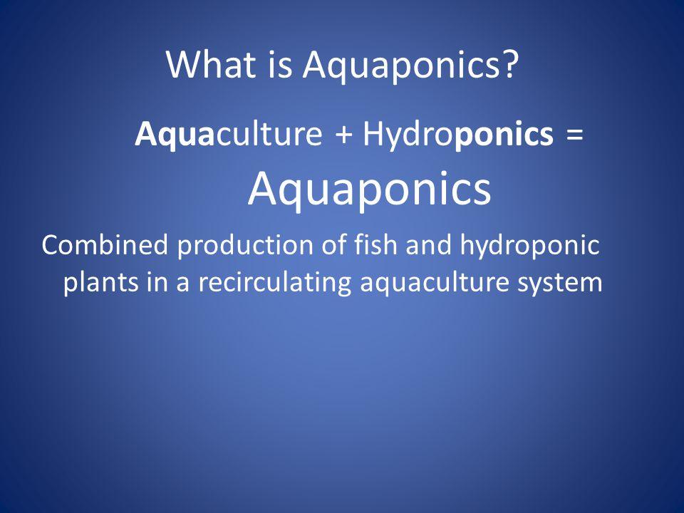 Aquaculture + Hydroponics = Aquaponics