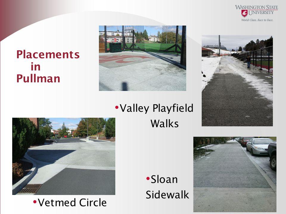 Placements in Pullman Valley Playfield Walks Sloan Sidewalk