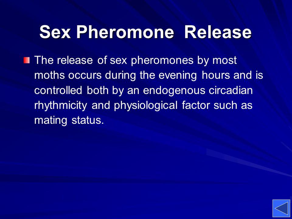 Sex Pheromone Release