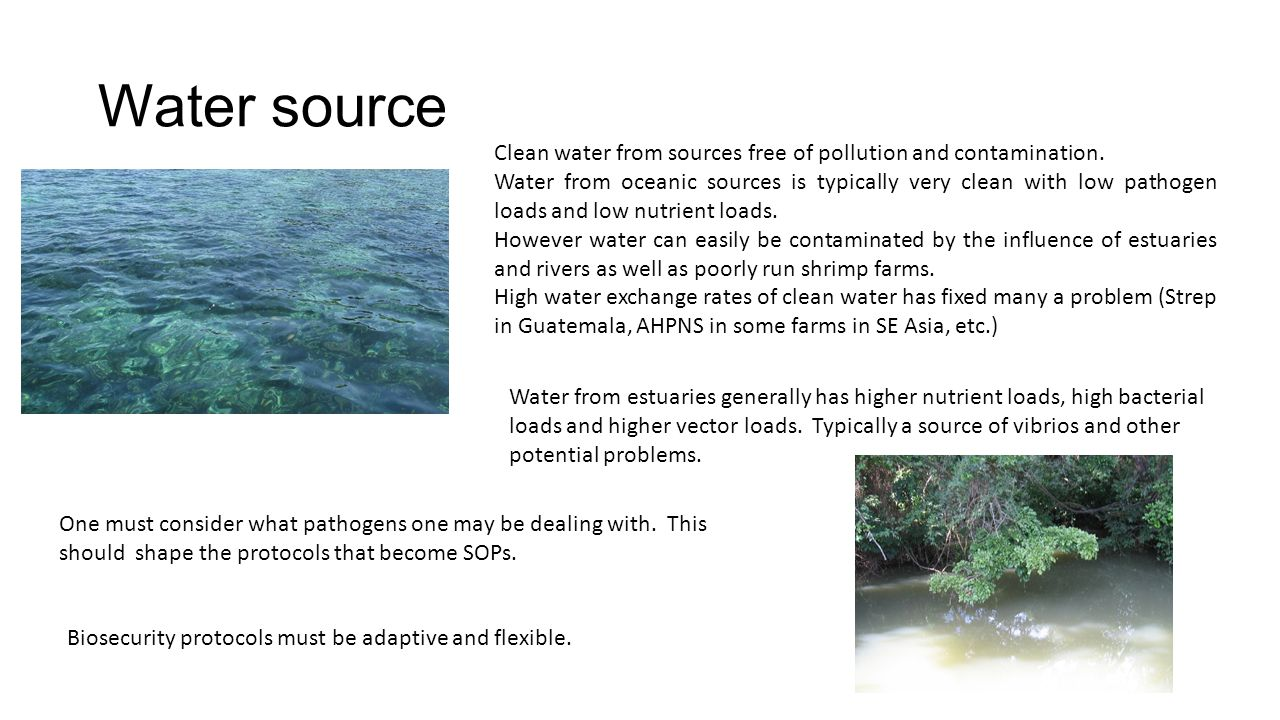 Water source Clean water from sources free of pollution and contamination.