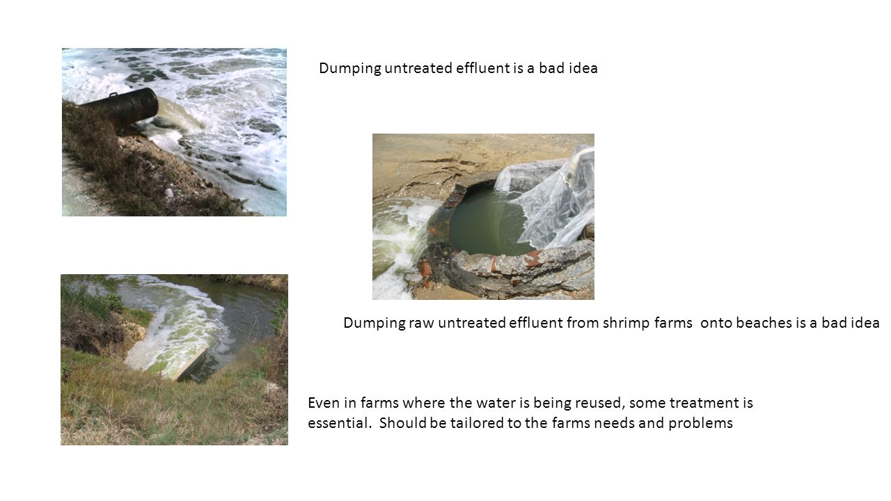 Dumping untreated effluent is a bad idea