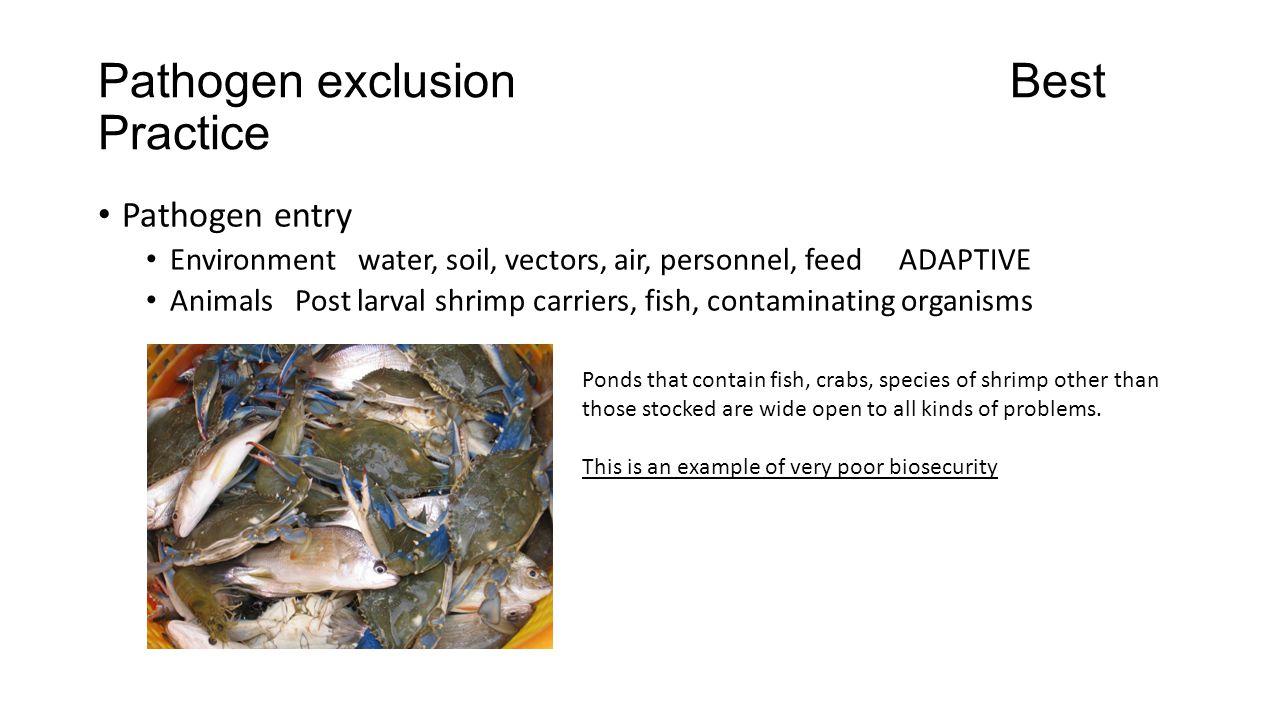 Pathogen exclusion Best Practice