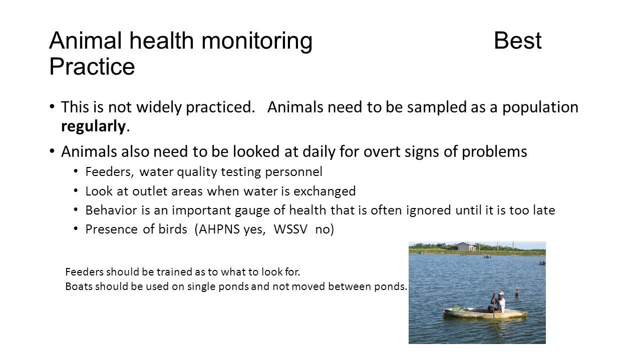 Animal health monitoring Best Practice