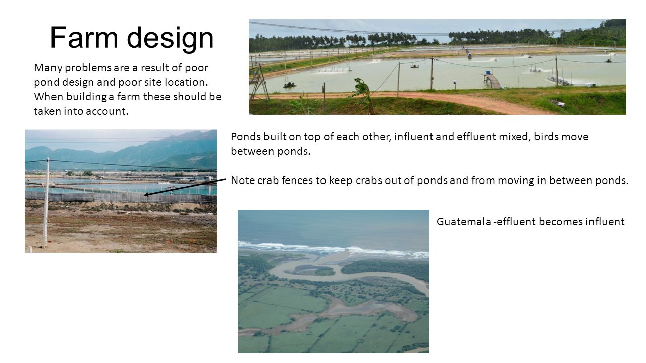 Farm design Many problems are a result of poor pond design and poor site location. When building a farm these should be taken into account.