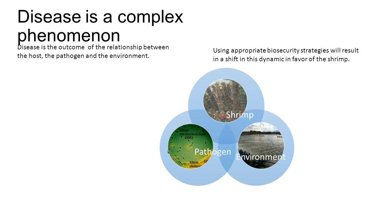 Disease is a complex phenomenon