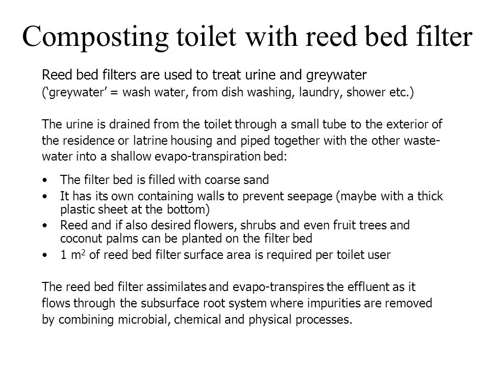 Composting toilet with reed bed filter