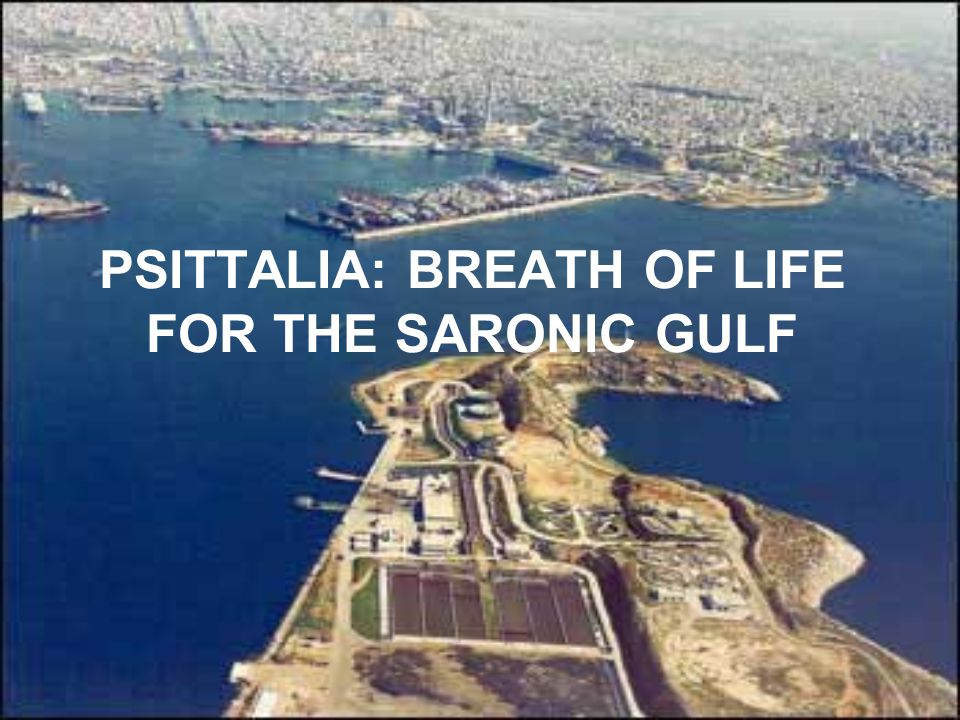 PSITTALIA: BREATH OF LIFE FOR THE SARONIC GULF