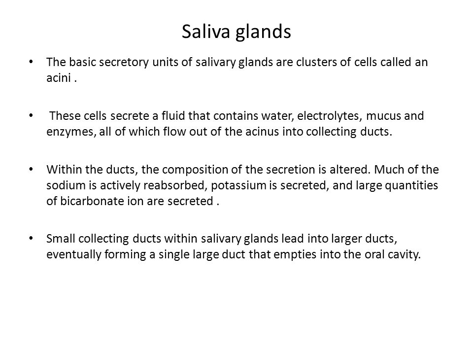 Saliva glands The basic secretory units of salivary glands are clusters of cells called an acini .