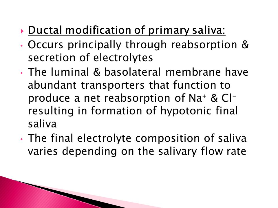 Ductal modification of primary saliva: