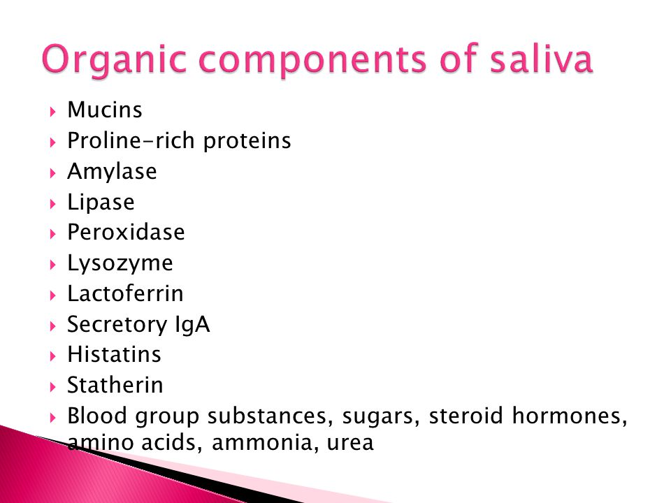 Organic components of saliva