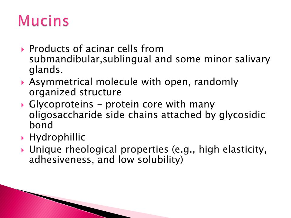 Mucins Products of acinar cells from submandibular,sublingual and some minor salivary glands.