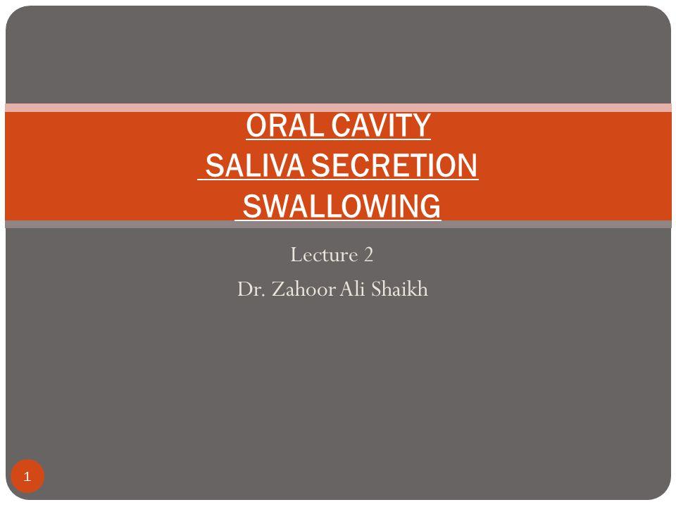 ORAL CAVITY SALIVA SECRETION SWALLOWING
