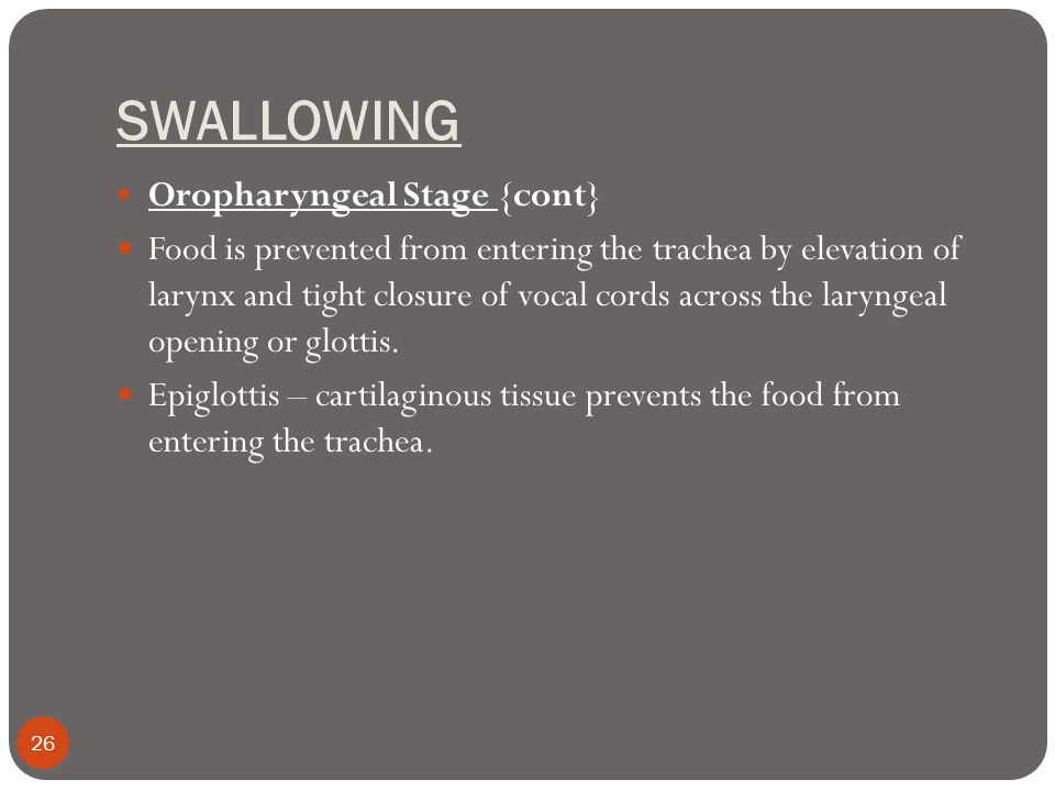 SWALLOWING Oropharyngeal Stage {cont}