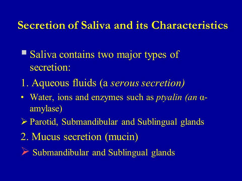 Secretion of Saliva and its Characteristics
