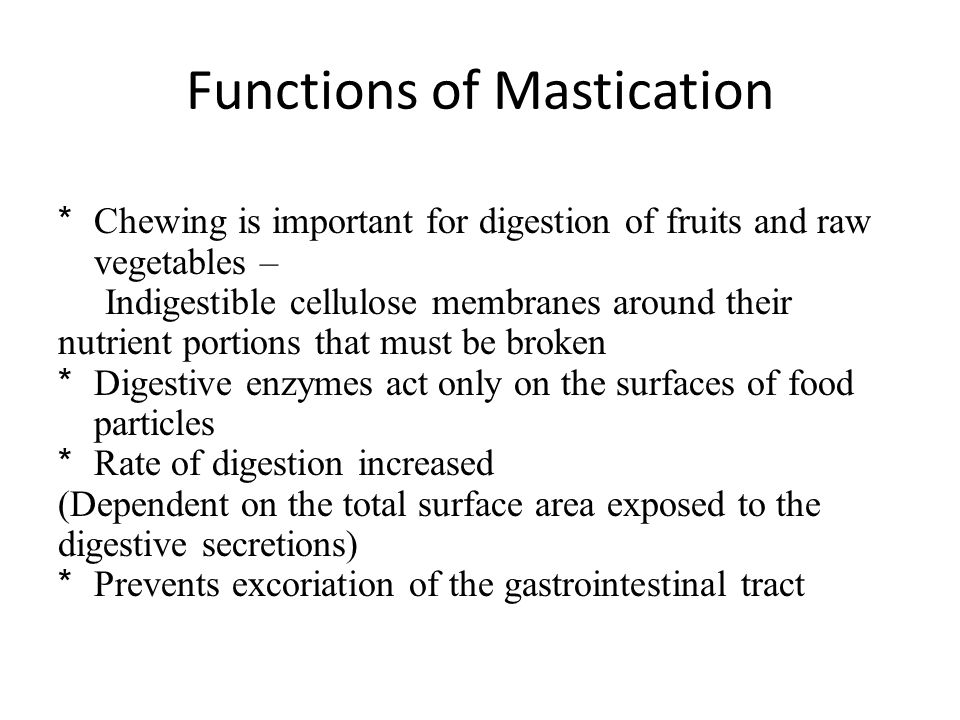 Functions of Mastication
