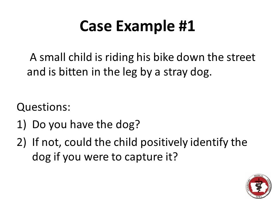 Case Example #1 A small child is riding his bike down the street and is bitten in the leg by a stray dog.