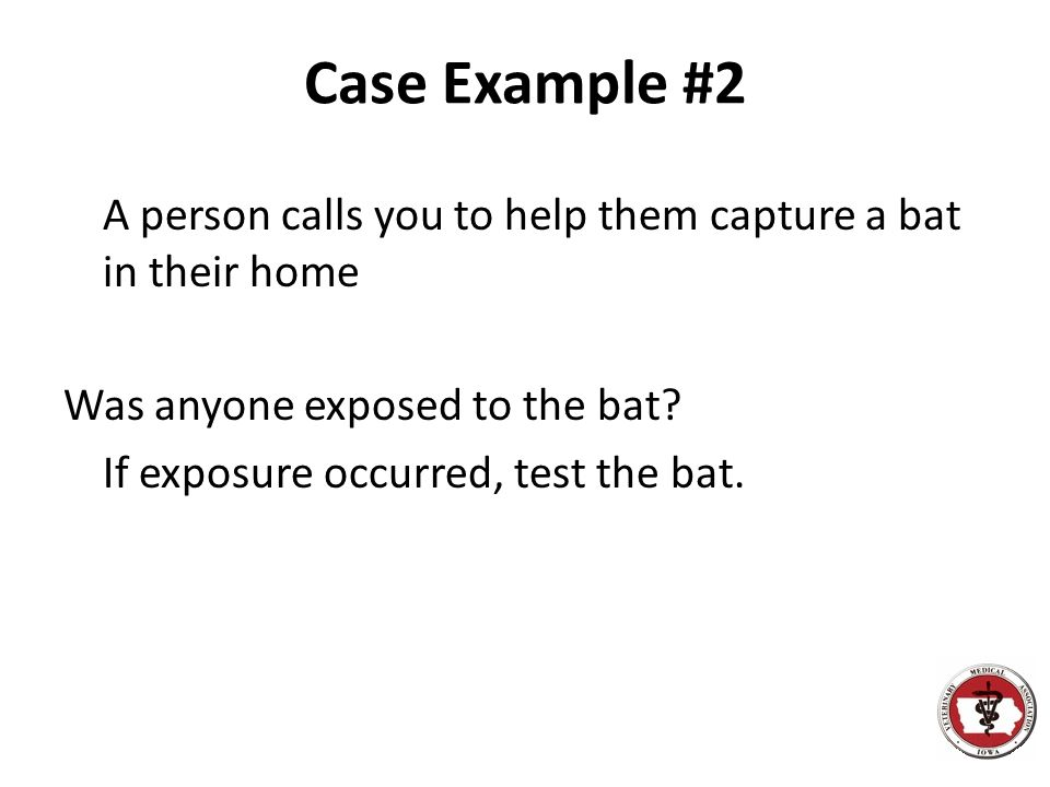 Case Example #2 A person calls you to help them capture a bat in their home Was anyone exposed to the bat If exposure occurred, test the bat.