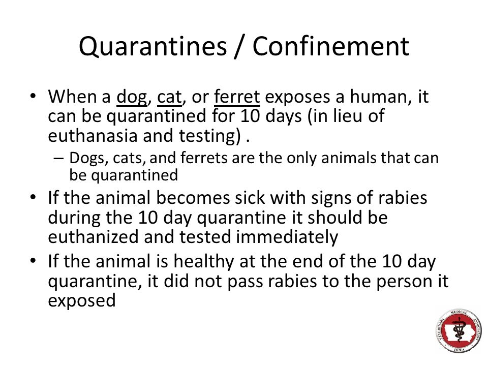 Quarantines / Confinement