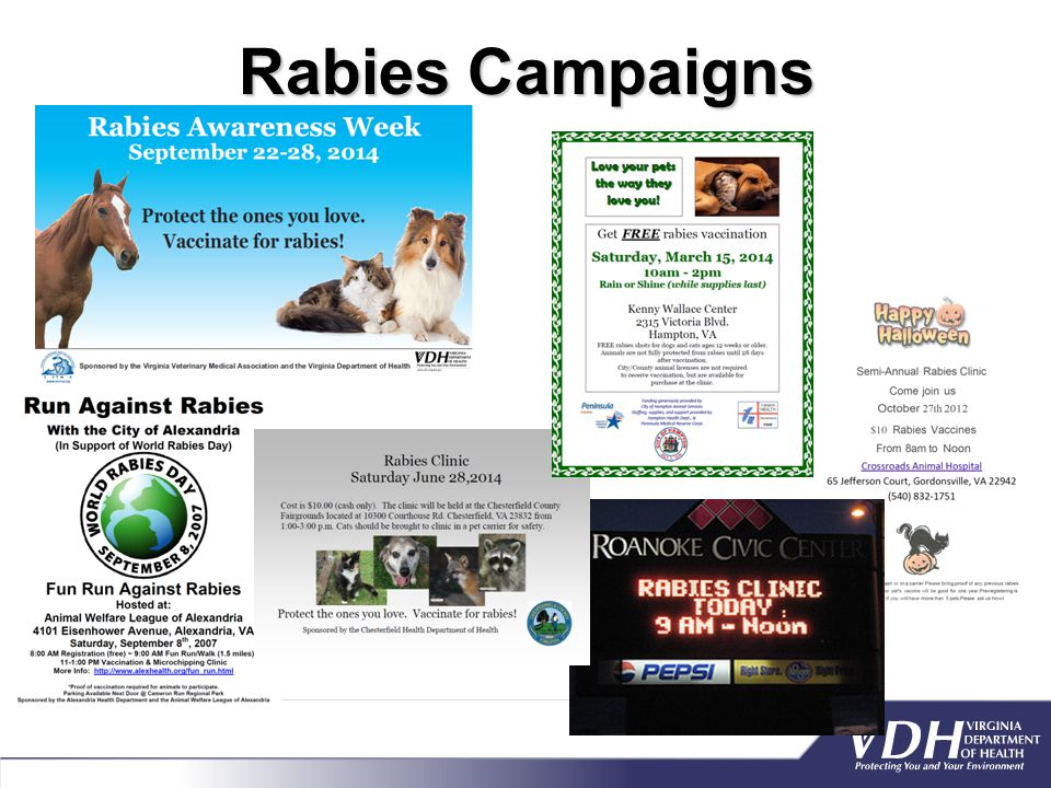 Rabies Campaigns