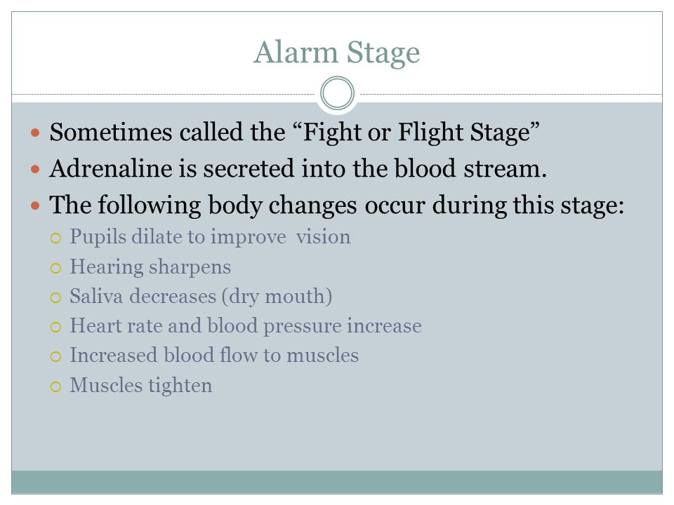 Alarm Stage Sometimes called the Fight or Flight Stage