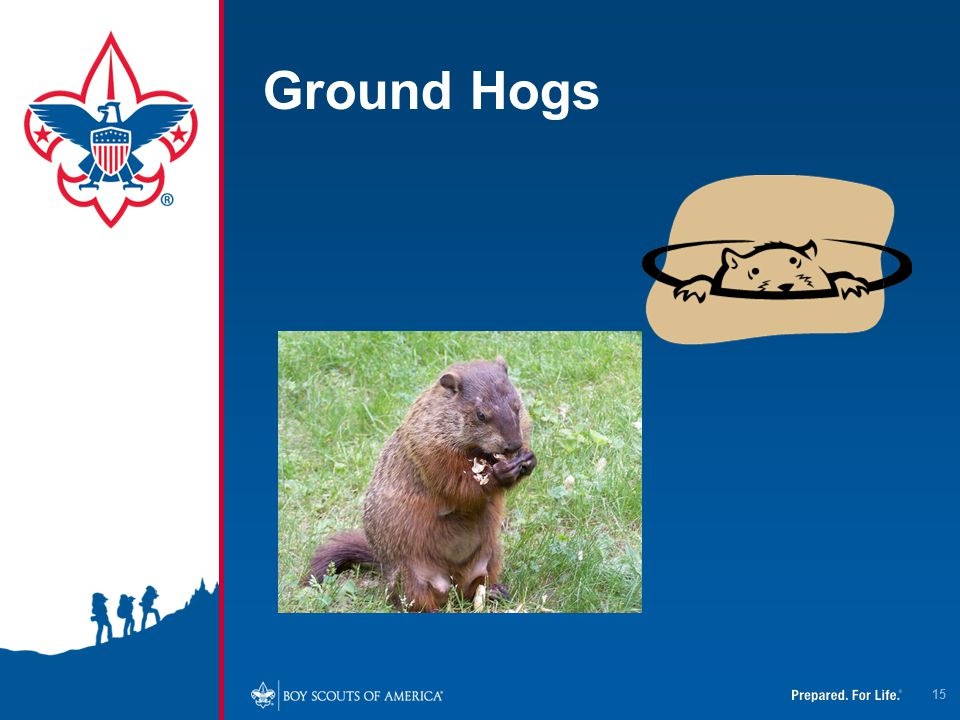 4/12/2017 Ground Hogs.