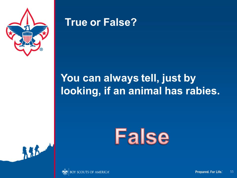 True or False You can always tell, just by looking, if an animal has rabies. False
