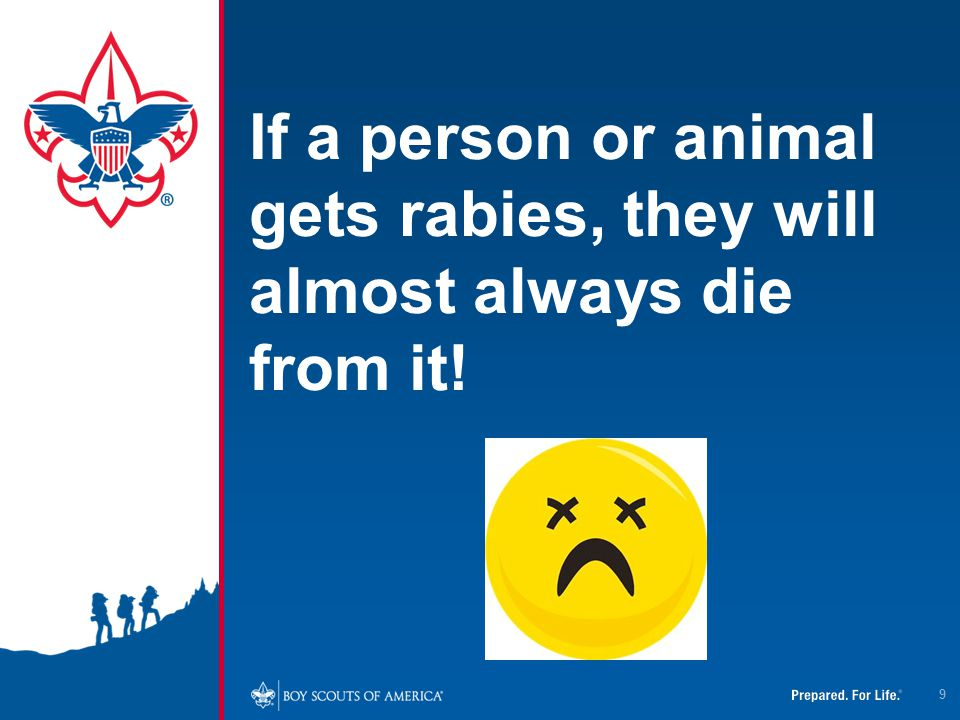 4/12/2017 If a person or animal gets rabies, they will almost always die from it!