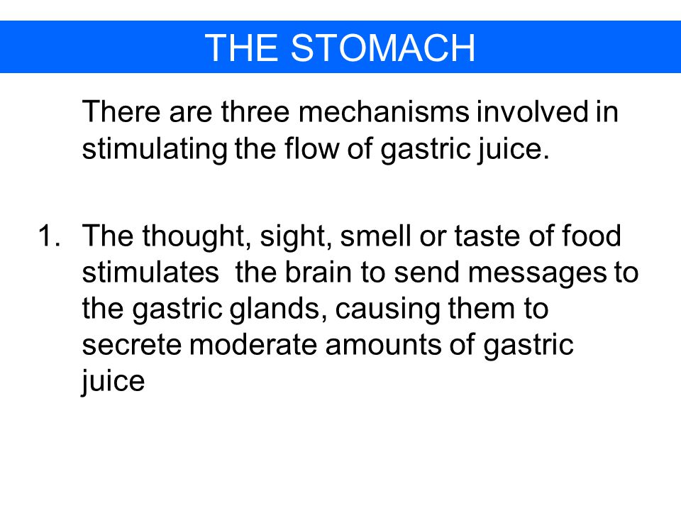 THE STOMACH There are three mechanisms involved in stimulating the flow of gastric juice.