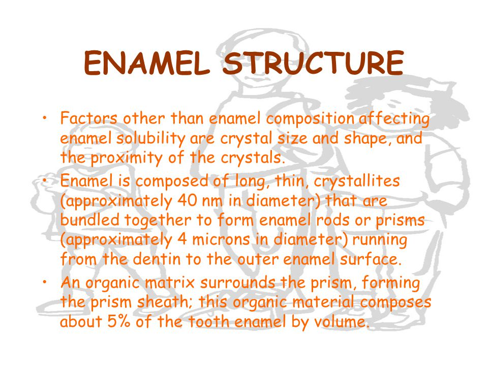 ENAMEL STRUCTURE Factors other than enamel composition affecting enamel solubility are crystal size and shape, and the proximity of the crystals.