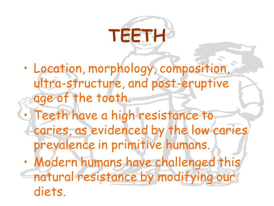 TEETH Location, morphology, composition, ultra-structure, and post-eruptive age of the tooth.