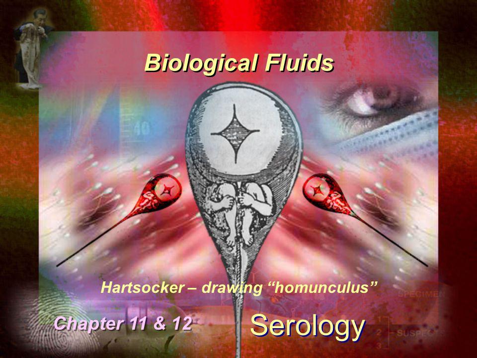 Hartsocker – drawing homunculus