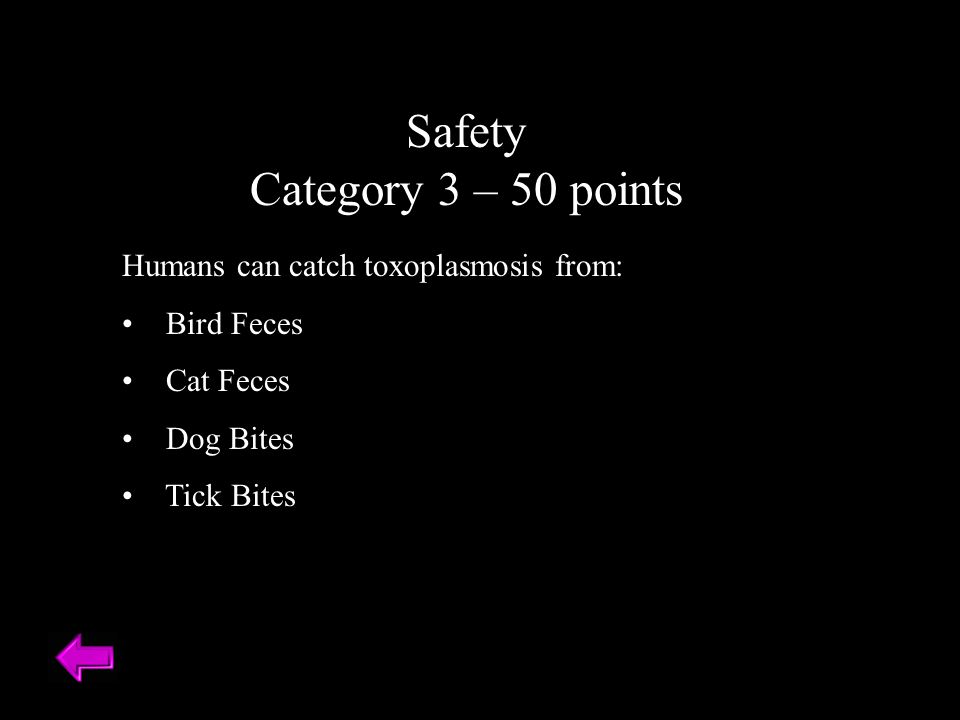 Safety Category 3 – 50 points Humans can catch toxoplasmosis from: