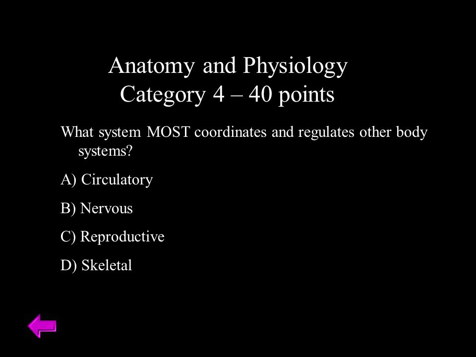 Anatomy and Physiology Category 4 – 40 points