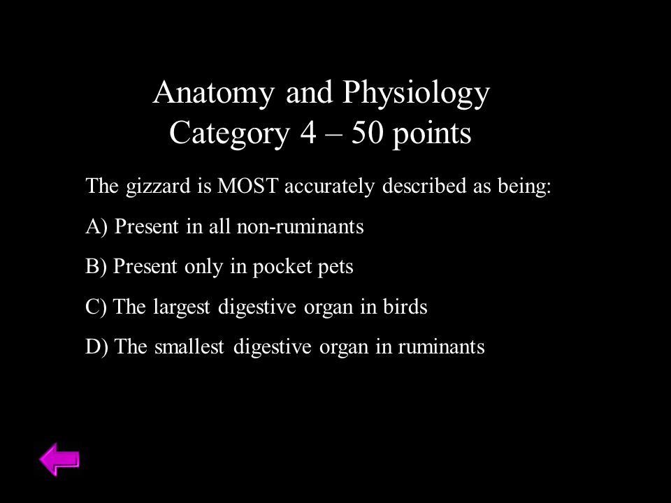 Anatomy and Physiology Category 4 – 50 points