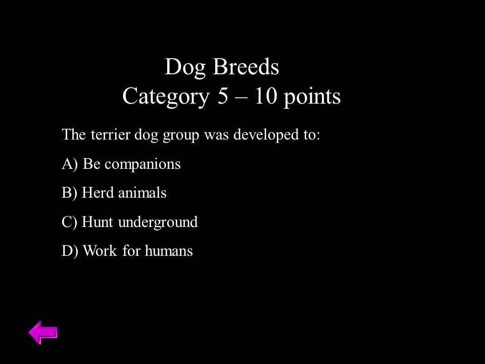 Dog Breeds Category 5 – 10 points