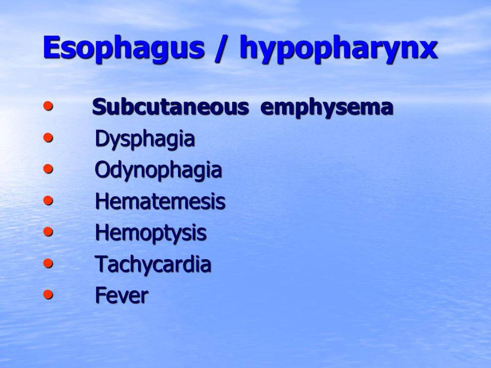 Esophagus / hypopharynx