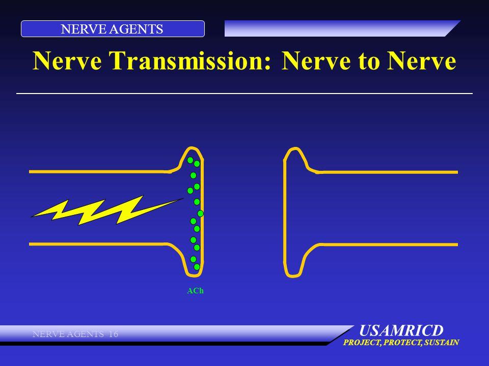Nerve Transmission: Nerve to Nerve